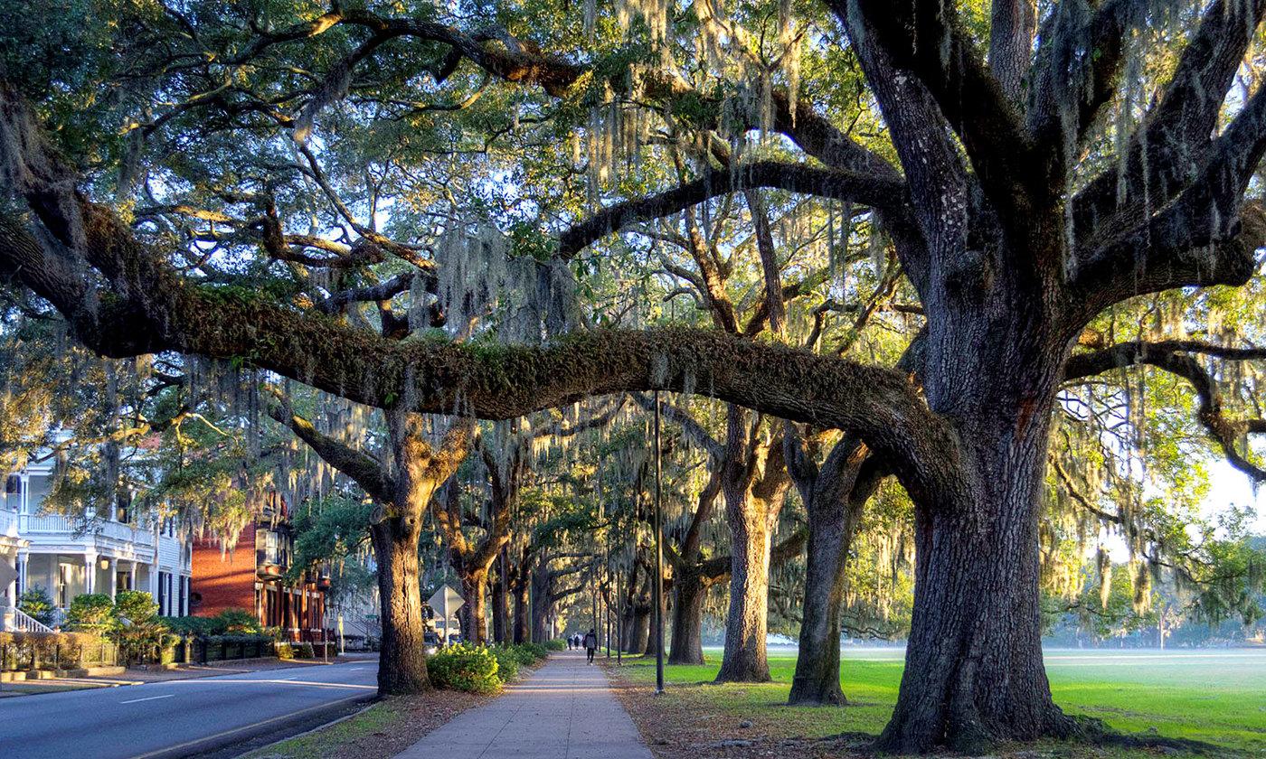 Savannah Georgia   Places to visit in USA