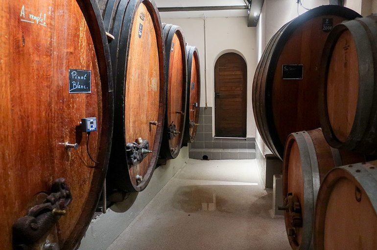 Aging barrels at Domaine Wach in Andlau, France