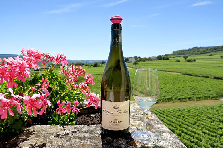 8 Days in French Wine Country