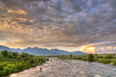 Flyfishing at Madison River near Firehole Ranch in Western Yellowstone, Montana