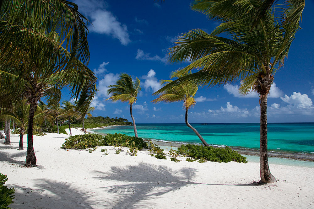 Pasture Bay Beach At Jumby Island On Long Antigua And Barbuda