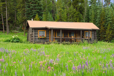 The Private Luxury Cabin surrounded by wildflowers at Firehole Ranch in Western Yellowstone, Montana