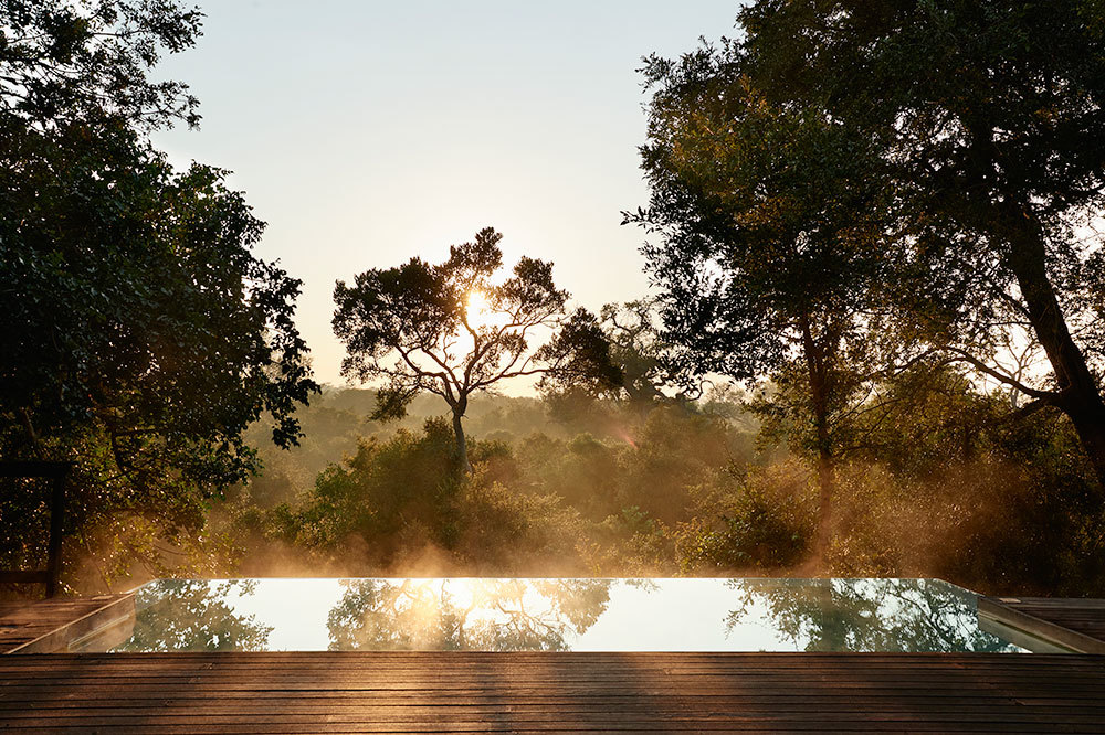 A private pool of the Royal Suite overlooks the forsest canopy at Royal Malewane in South Africa
