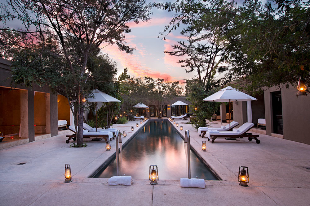 The main pool at the spa at Royal Malewane in South Africa