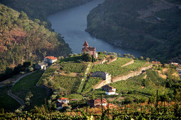 Douro Valley & Northern Portugal